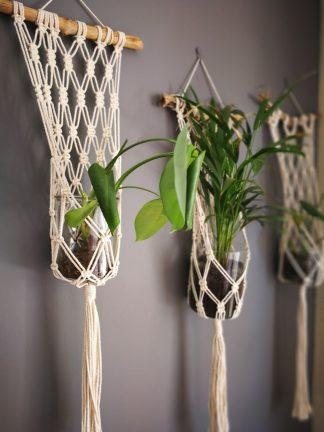 Driftwood Plant Hangers