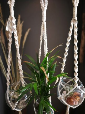 natural plant hangers